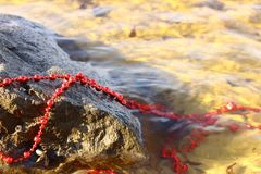 Lost red beads decorate a stone glaring in the bright sun. Lost red beads decorate the stone, glaring in the bright sun, the water plays on the beads with its stock photo