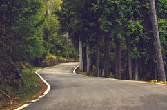 Lost road Royalty Free Stock Photography