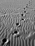 Lost in the sand.. Footprints in the sand in black and white Royalty Free Stock Photo