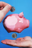 Lost savings. Coin inserting in piggy bank and droping out of it Stock Photos