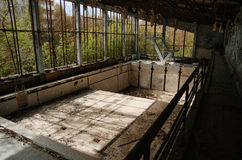 Lost school sport gym with swimming pool at Chernobyl city zone. Of radioactivity ghost town Royalty Free Stock Image