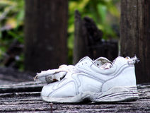 Lost shoe. Where is the owner royalty free stock image