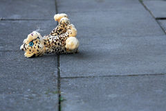 Lost soft toy on the ground. A lost soft toy on the ground. The forgotten toys stock photos