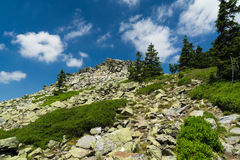Lost stones. (1250 m) is a distinctive rock formation on the mountainside in Pecný, Jeseniky. The rock is composed of Devonian quartzite, covered with scales stock photo