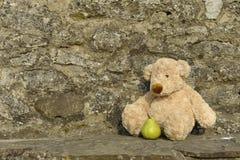 Lost Teddy bear outdoors Royalty Free Stock Photos
