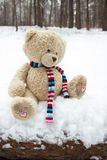 Lost teddy bear in the winter forest. Lost teddy bear sitting on the log in the winter forest Royalty Free Stock Photos