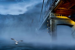 Lost in the time. Scene with mist under the bridge and gulls stock photography