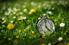 Lost Times. Alarm clock-lying blooming mountain meadow Royalty Free Stock Photos