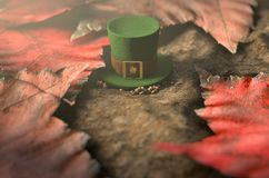 Lost Tiny Leprechaun Hat. A concept image showing a tiny leprechaun hat apparently lost on the ground surrounded by dead leaves in the day time - 3D render Stock Images