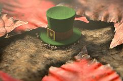 Lost Tiny Leprechaun Hat. A concept image showing a tiny leprechaun hat apparently lost on the ground surrounded by dead leaves in the day time - 3D render Royalty Free Stock Images