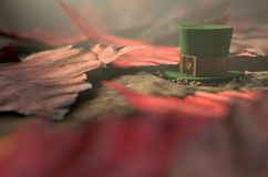 Lost Tiny Leprechaun Hat. A concept image showing a tiny leprechaun hat apparently lost on the ground surrounded by dead leaves in the day time - 3D render Stock Photography