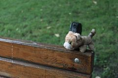 Lost toy. Forgotten in the Park toy royalty free stock image