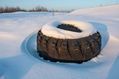 Lost tyre on winter medow Royalty Free Stock Images