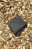Lost Wallet Royalty Free Stock Image