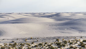 Lost in White Sands Monument Royalty Free Stock Image