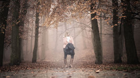 Lost woman foggy autumn park searching direction. Stock Photos
