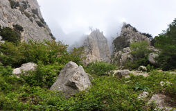Lost World, surrounded by fog. Reserve Lost World, surrounded by fog, Crimea royalty free stock images