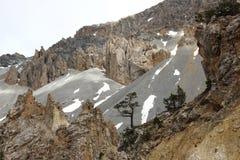 Losu Angeles Casse déserte, francuza Queyras Naturalny park zdjęcia stock