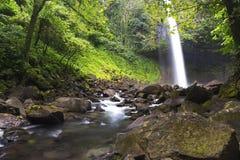Losu Angeles Fortuna siklawy tropikalnego lasu deszczowego Arenal Tropikalny park narodowy Costa Rica obraz royalty free
