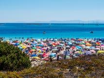Losu Angeles Pelosa plaża, Stintino, Włochy zdjęcia stock