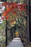 losu angeles shangri Fotografia Royalty Free