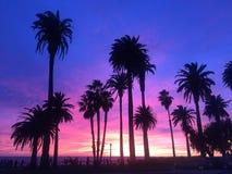 LOSU ANGELES zmierzch Zdjęcie Royalty Free