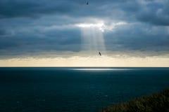 Lot światło Zdjęcie Stock