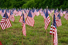 A lot of american flags Stock Photography