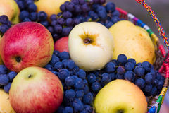 A lot of apples and grapes Royalty Free Stock Image