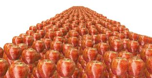 Lot of apples Royalty Free Stock Photo