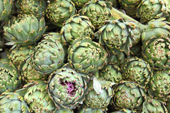 Lot of artichokes Royalty Free Stock Photography