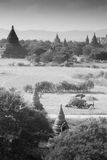 A lot of bagan pagodas in Myanmar Stock Images
