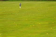 Lot of balls. A golf pratice trainning center at 100 yards royalty free stock photo