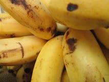 Lot of Bananas. Stock Photos