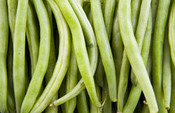 A lot of beans Stock Images