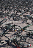 Lot of bicycles. On the square in summer Royalty Free Stock Images