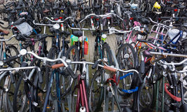 A lot of bikes on the bicycle parking Royalty Free Stock Image