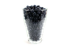 A lot bilberry Royalty Free Stock Photos
