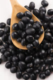 A lot of black soybeans Stock Image