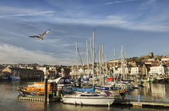 A lot of boats in the seaport. A lot of different boats in the seaport in England city  at the sunset Stock Photography