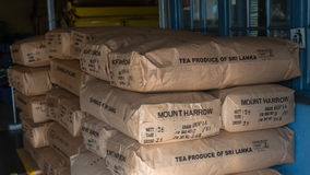 A lot of Boxes of black tea in the tea factory warehouse. Stock Photo