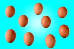 Lot of brown chicken eggs Stock Image