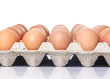 Lot of brown eggs in a row on a tray Royalty Free Stock Photos