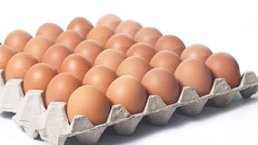 Lot of brown eggs in a row on a tray Royalty Free Stock Photography