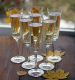 Champagne in the glass. royalty free stock image