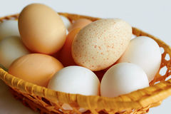Lot of chicken and Turkey eggs are in one basket. A lot of chicken and Turkey eggs are in one basket Royalty Free Stock Image