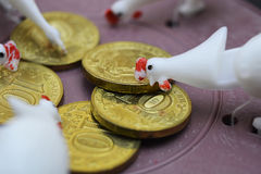 A lot of chickens near coins Stock Photos