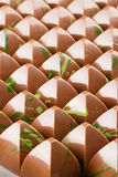 Lot of chocolate bonbons Stock Images