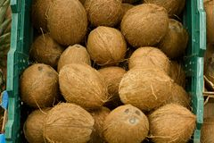 A lot coconuts in the supermarket. Many coco lying in a boxes. Top view. Mock up.Copy space. Selective focus. Stock Photos