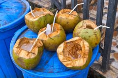Coconuts in a trash Royalty Free Stock Photos